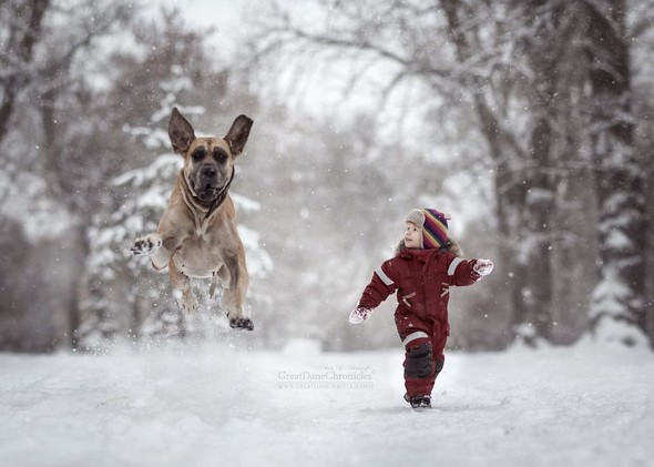 Kar Yağarken İçinizi Isıtacak Fotoğraflar!